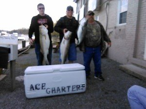 Hudson River fishing charters