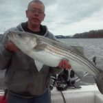 Hudson River striper fishing charters pics 30