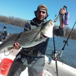 Hudson River striper fishing charters pics 26