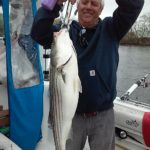 Hudson River striper fishing charters pics 25