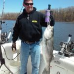 Hudson River striper fishing charters pics 17