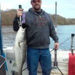 Hudson River striper fishing charters pics 16