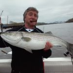 Hudson River striper fishing charters pics 8