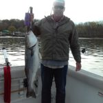 Hudson River striper fishing charters pics 7