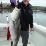 Hudson River striper fishing charters pics 5