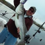 Hudson River striper fishing charters pics 2