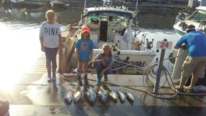 find quality charters to catch fish like these