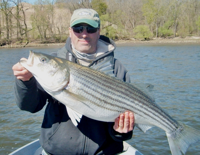2012 Spring Hudson River Striper Fishing Reports and Journal