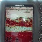 Hudson river striper charter pics 2015 a