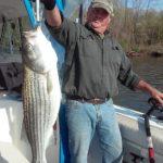 Hudson river striper charter pics 2015