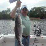 man holding striper bass