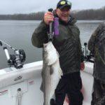 Hudson River striper fishing charters pics 22
