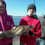 Big old catfish out of the Hudson River