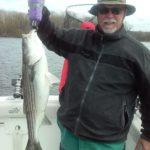 Hudson River striper fishing charters pics 13