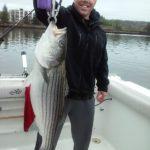 Hudson River striper fishing charters pics 5