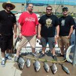 six king salmon on dock