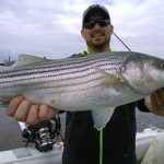 Hudson river striper charter pics 2014 b