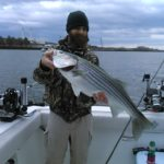 16 lb striped bass from the Hudson
