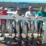 limit catch of kings caught with Ace Charters