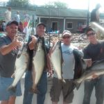 Lake Ontario fishing charters picture of salmon