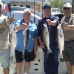 Four more stripers